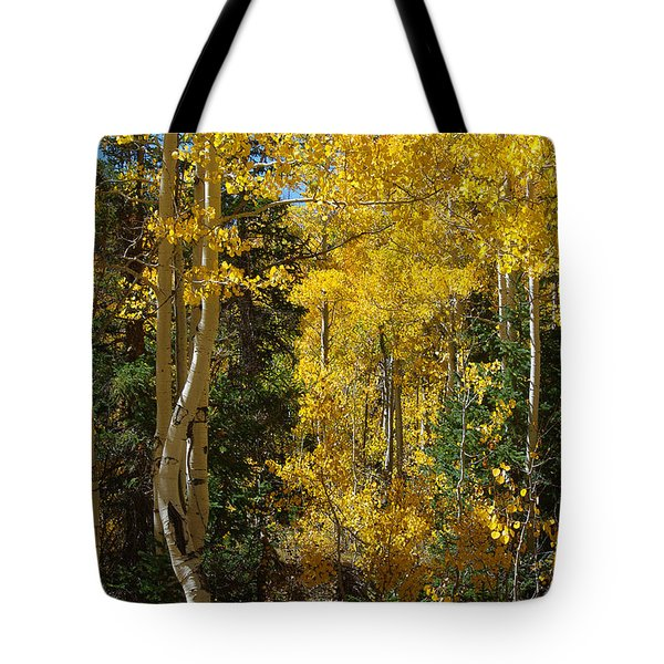 Tote Bag featuring the photograph Changing Seasons by Vicki Pelham