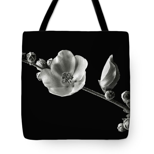 Tote Bag featuring the photograph Chaparral Mallow In Black And White by Endre Balogh