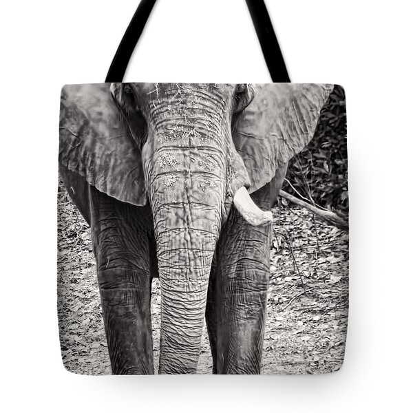 Tote Bag featuring the photograph Charge by Traci Cottingham