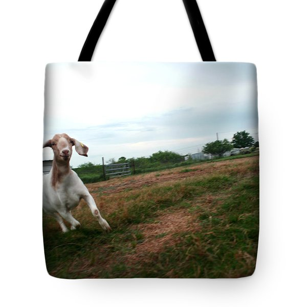 Tote Bag featuring the photograph Chased By A Crazy Goat by Lon Casler Bixby