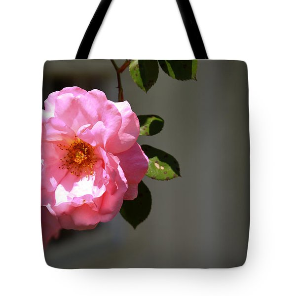 Cheerful Solo Tote Bag by Theresa Johnson