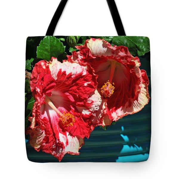 Cheery Cherry Appaloosa Tote Bag by Lynn Bauer