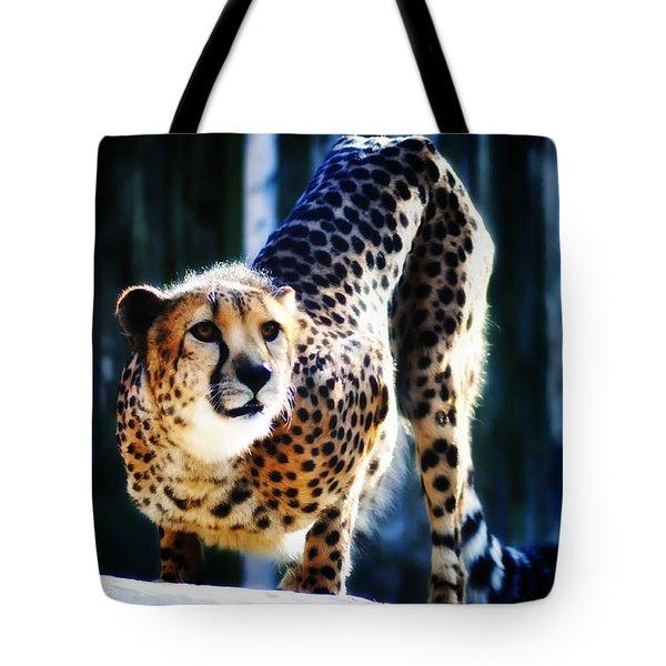 Cheeta Tote Bag by Bill Cannon