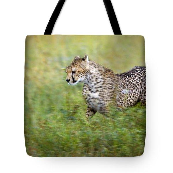 Cheetah Acinonyx Jubatus, Running Tote Bag by Carson Ganci
