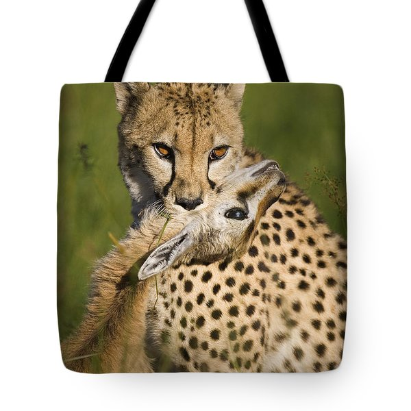 Cheetah Acinonyx Jubatus With Its Kill Tote Bag by Suzi Eszterhas