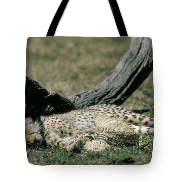 Cheetah Cub Sleeping And Guarding Hat Tote Bag by Greg Dimijian