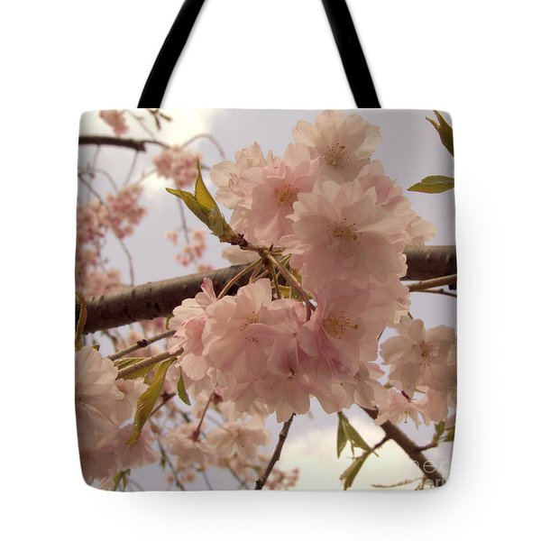 Cherry Blossom 2 Tote Bag by Andrea Anderegg