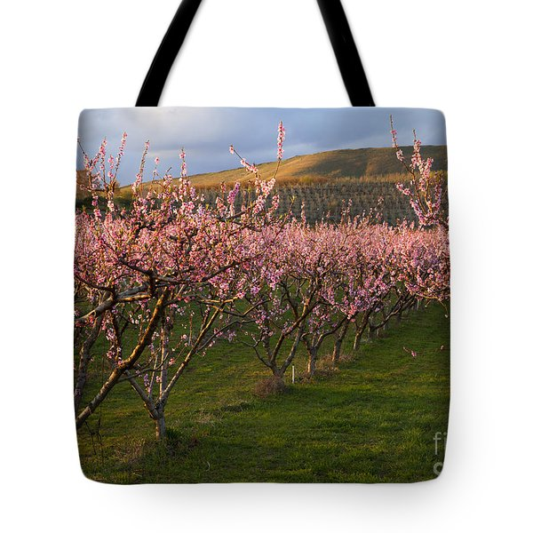 Cherry Blossom Pink Tote Bag by Mike  Dawson