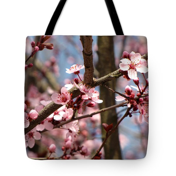Cherry Blossoms Tote Bag by Denise Keegan Frawley