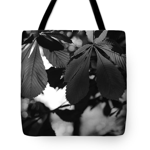 Chestnut Leaves Tote Bag