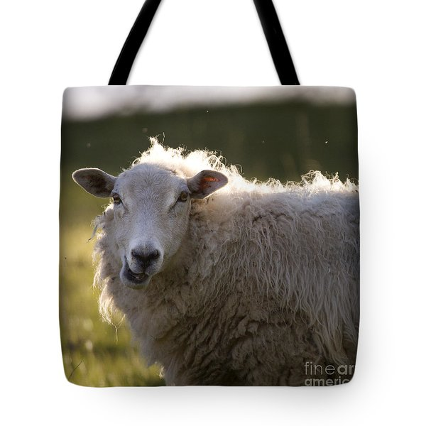 Chewing Tote Bag