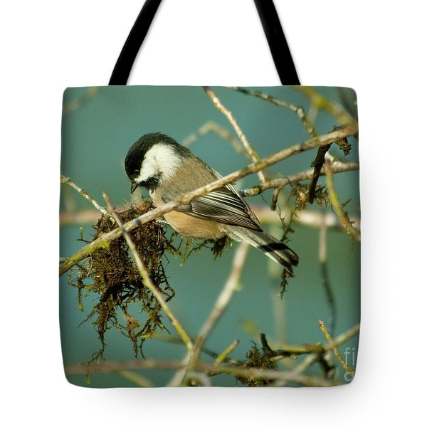Chick-a-dee Tote Bag