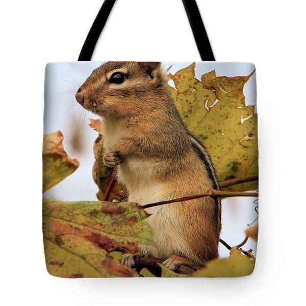 Chipmunk Tote Bag by Doris Potter