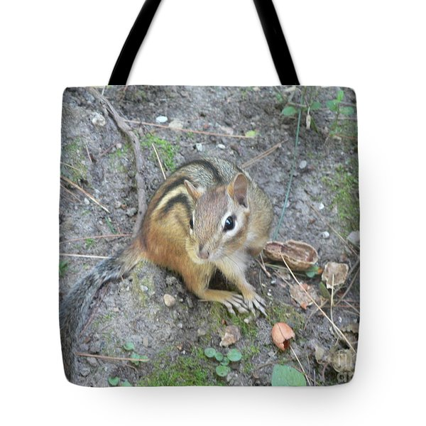 Tote Bag featuring the photograph Chipmunk Feast by Laurel Best