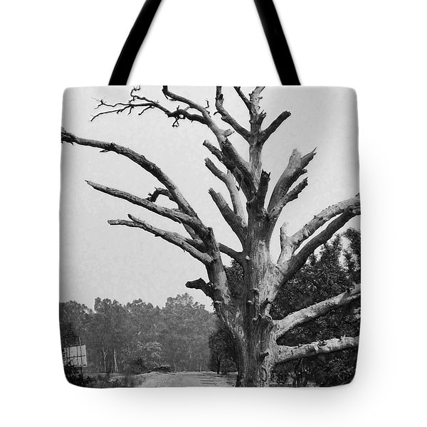 Chiseled Tree In Highway Tote Bag by Sumit Mehndiratta