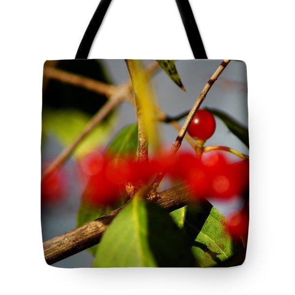 Choice Berry Tote Bag by LeeAnn McLaneGoetz McLaneGoetzStudioLLCcom