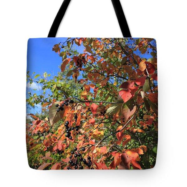 Chokecherry Tree Tote Bag