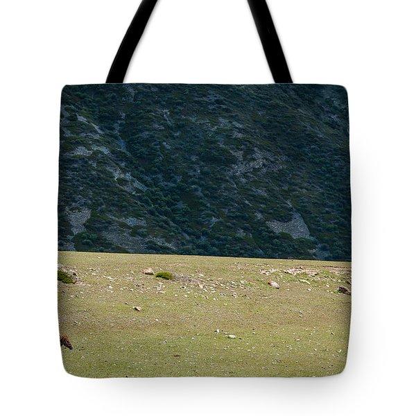 Chon Ak Su Tote Bag by Konstantin Dikovsky