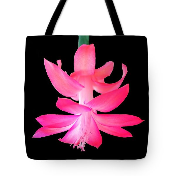Christmas Cactus Tote Bag by Steven Clipperton