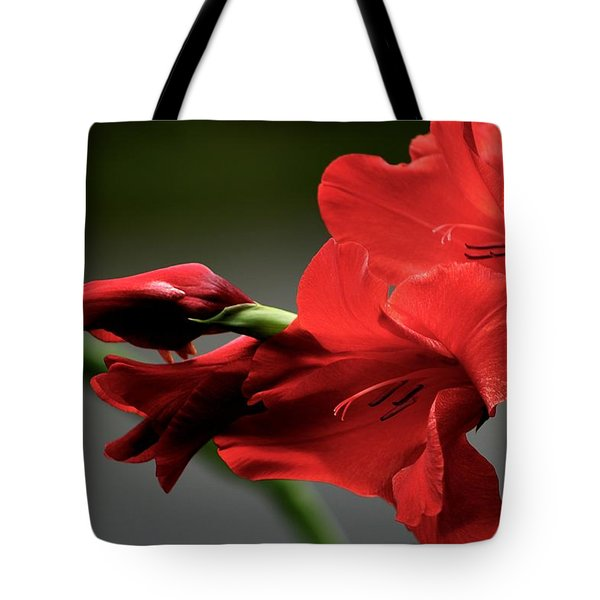 Chromatic Gladiola Tote Bag