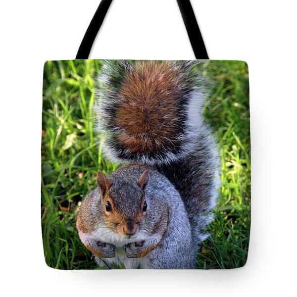 City Squirrel Tote Bag