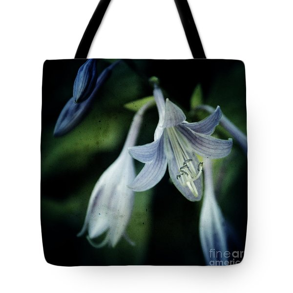 Cladis 02s Tote Bag by Variance Collections