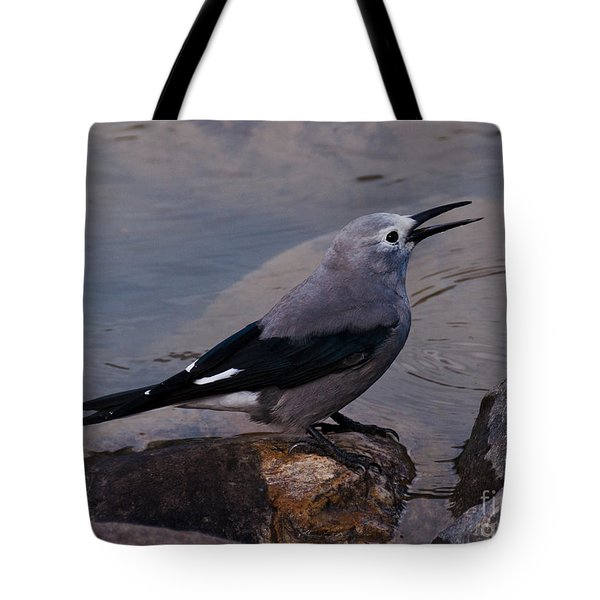 Tote Bag featuring the photograph Clark's Nutcracker by Cheryl Baxter
