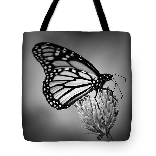 Classic Beauty Tote Bag by Skip Willits