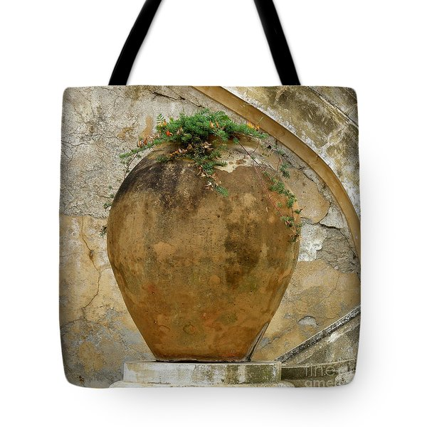 Tote Bag featuring the photograph Clay Pot by Lainie Wrightson
