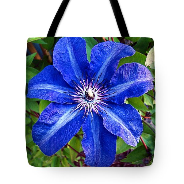 Tote Bag featuring the photograph Clematis by Nick Kloepping