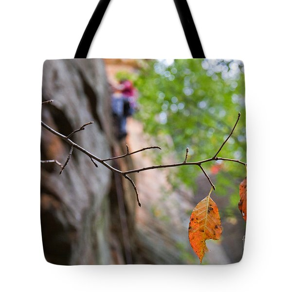 Climber In Fall Tote Bag