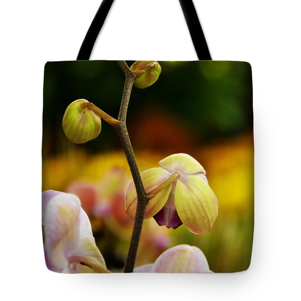 Climbing Slowly Tote Bag by Angelina Vick