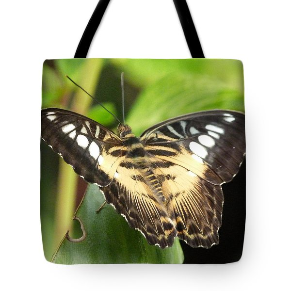 Tote Bag featuring the photograph Clipper Butterfly by Lynn Bolt