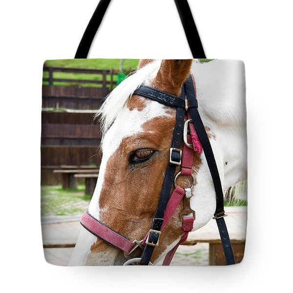 Tote Bag featuring the photograph Closeup Of Horse by Yew Kwang