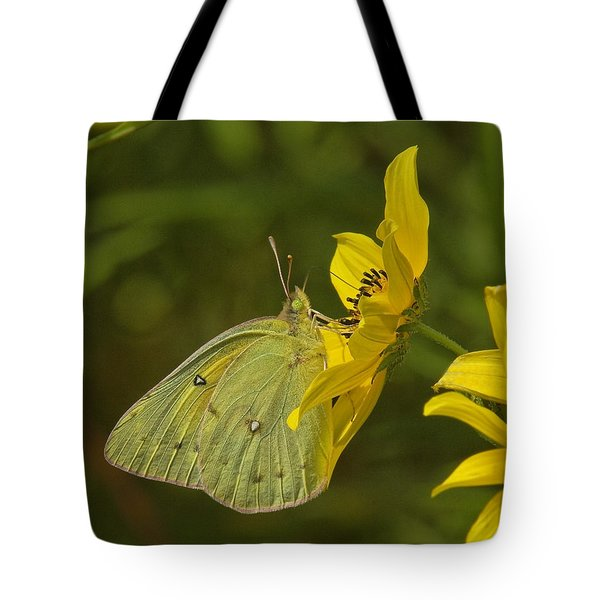 Clouded Sulphur Butterfly Din099 Tote Bag