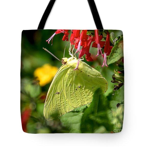 Cloudless Sulphur Tote Bag by Carol  Bradley