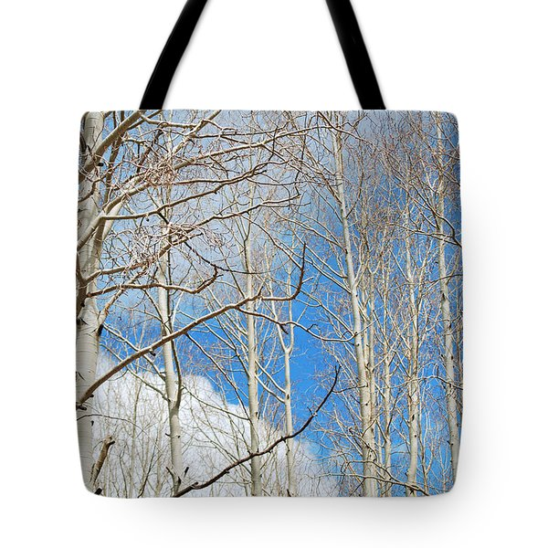Cloudy Aspen Sky Tote Bag