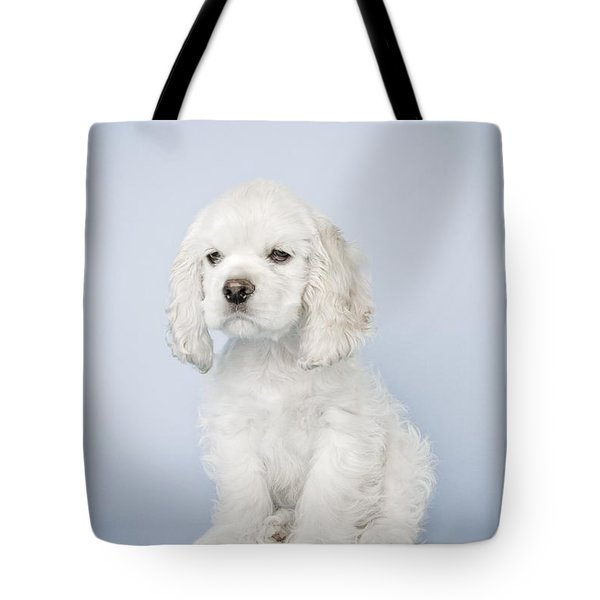 Cocker Spaniel Tote Bag by David DuChemin