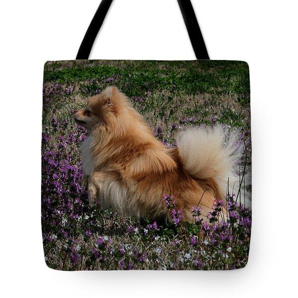 Cody Tote Bag by Karen Harrison