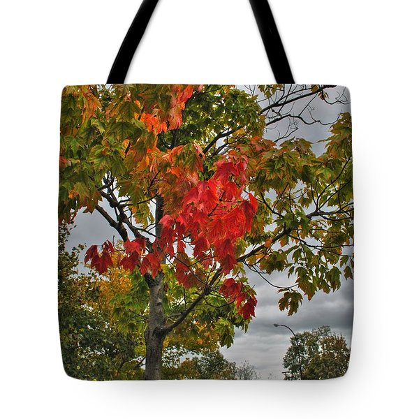 Tote Bag featuring the photograph Cold Autumn Breeze  by Michael Frank Jr
