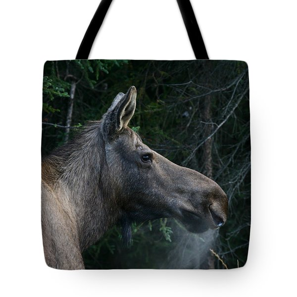 Tote Bag featuring the photograph Cold Morning by Doug Lloyd