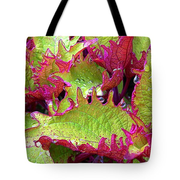 Coleus With Raindrops Tote Bag by Judi Bagwell