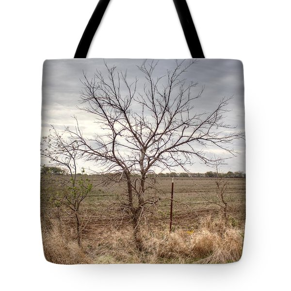 Color - Country Tree Tote Bag