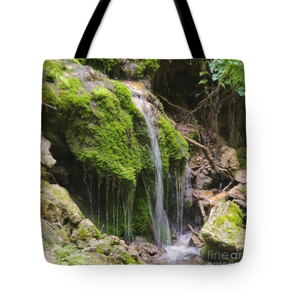 Tote Bag featuring the photograph Colorado 2 by Deniece Platt