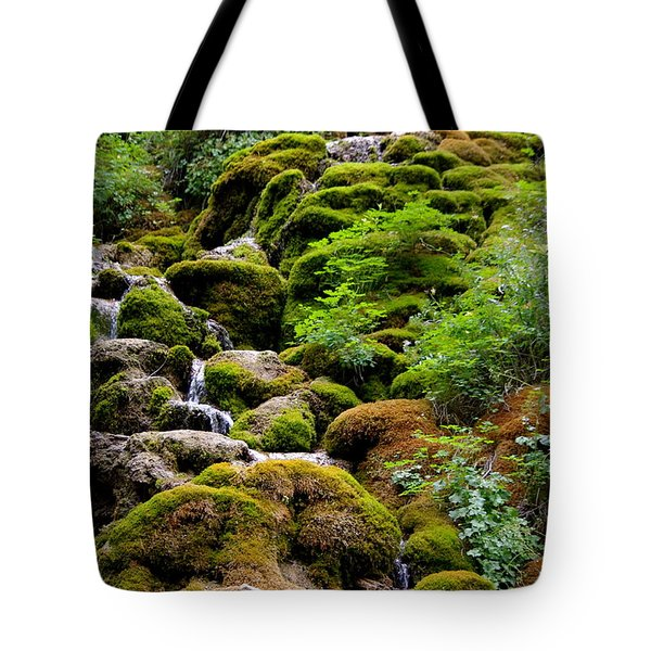 Tote Bag featuring the photograph Colorado 3 by Deniece Platt