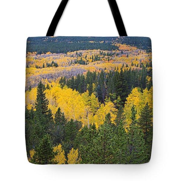 Colorado Autumn Aspens Boulder County  Tote Bag by James BO  Insogna