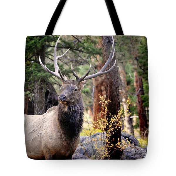 Tote Bag featuring the photograph Colorado Elk by Nava Thompson