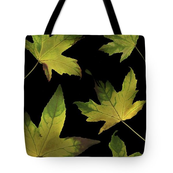 Colorful Autumn Leaves Tote Bag by Deddeda