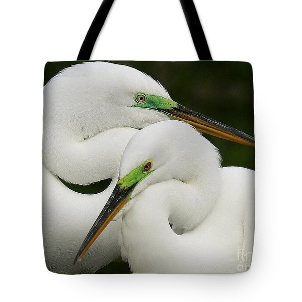 Tote Bag featuring the photograph Colorful Couple by Myrna Bradshaw