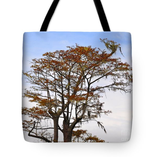 Colorful Cypress Tote Bag by Al Powell Photography USA